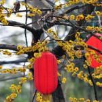 Ein neues Jahr - ein neuer Blog: Totenhemd-Blog